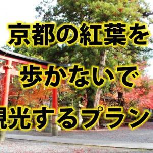 京都の紅葉を歩かないで見れる?タクシーや人力車を利用するおすすめプラン!