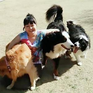 お犬と団らん