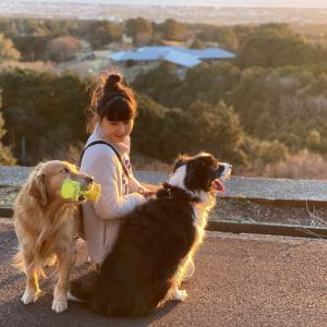 愛犬4頭と見る贅沢な景色&わんこぱんの常連客
