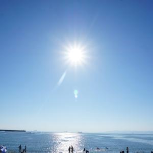 海水浴!(和歌山県 浜の宮海水浴場)