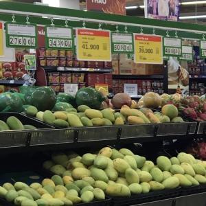 ハノイのマンゴーと向き合ってみる