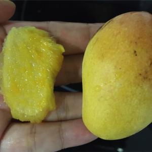 ハノイのリンラン市場で旬のミニマンゴーをゲット