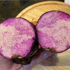 ベトナムの山芋「Khoai mỡ」をハノイで食べてみた