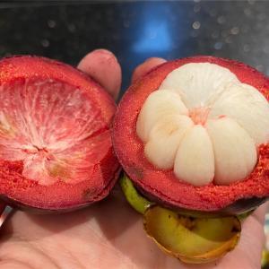 たまには果物の女王を(マンゴスチン)