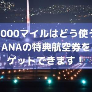 ANA10,000マイルがあればどう使う?特典航空券をゲットできます【+裏ワザあり】