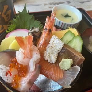 激安の海鮮チラシ(鮨の錦)