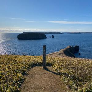 12月のアゼチの岬