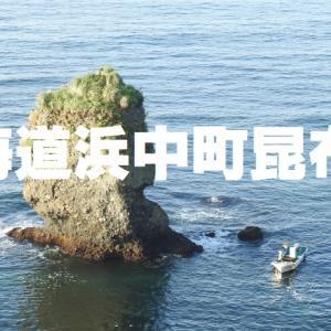 琵琶瀬付近の昆布漁の風景