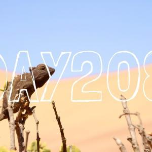 DAY208 ナミビアを旅する⑯ 人気No.1観光地スワコップムンド 〜ナミブ砂漠の小さな生き物の世界『リトル5』&大興奮バギーツアー〜