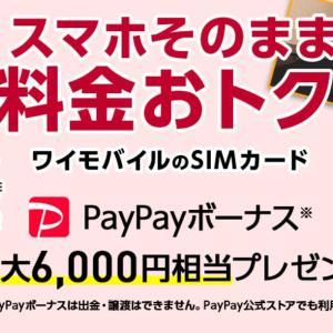 【キャッシュバック2倍】ワイモバイルに新規・乗り換えでPayPayが6,000円分キャッシュバック