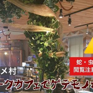 大阪アメリカ村のスネークカフェでゲテモノ女子会