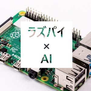 【ラズパイ】AIを動かす①アヤメの分類(Python3)