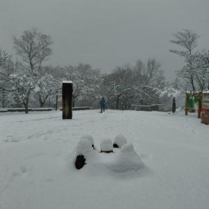 雪の高尾山(2021年1月)