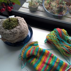 【編みむめも】ゴム編みするたびに思うこと「世界は広い」