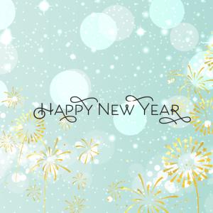 新しい年に新しい体験を