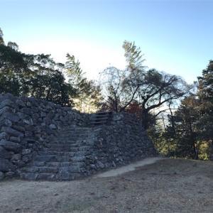二俣城 (静岡県浜松市)
