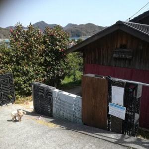 しまなみ海道 オミシマコーヒー焙煎所さんへ