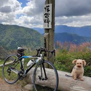 深淵から落合峠まで いいとこどりで楽ちんサイクリング。