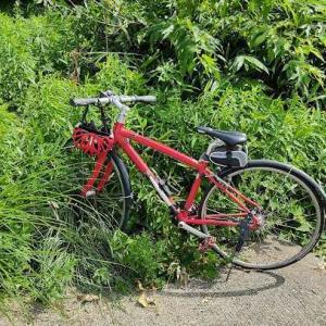 自転車で気持ちよく走れたんで、ヨシとしよか!