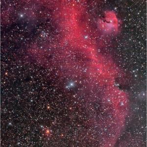 サヨウナラ、、、かもめ星雲