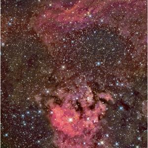 Ced214・???マーク星雲中心部です!