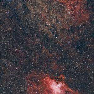 M16 &「鳥の巣星雲」です