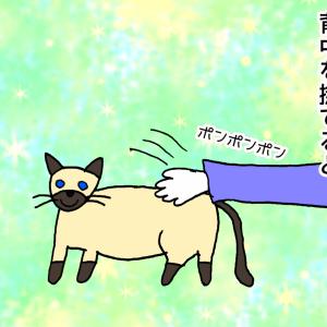 猫って本当はゴム製?