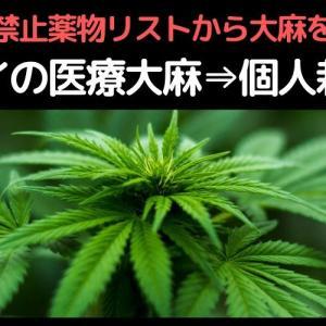 ◆タイの医療大麻⇒個人栽培?◆政府禁止薬物リストから大麻を削除◆