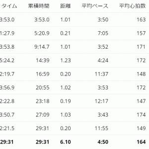 9/28 簡易ガチゆる走