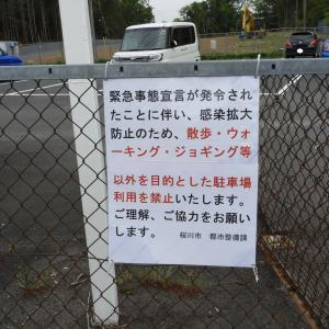 上野沼の岸釣りに変化あり--でも、このままでいいのかな?