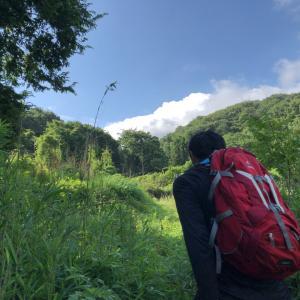 イノシシから里山と田んぼを守る(その1)