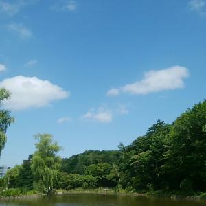 7月30日 月寒公園。ポール・アンカ。西岸良平さん。菩提樹(夫婦愛)。