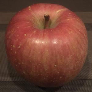 長野産サンふじ「りんご」
