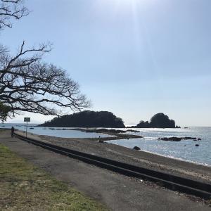 咸陽島は潮干狩りと休校中のお子さんで賑わってました