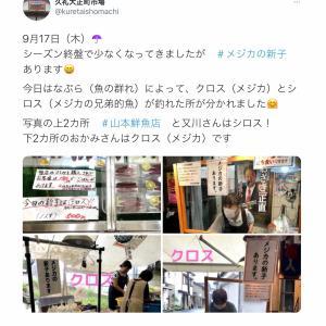 今年もブシュカンの季節  今年は東京でもしんこ(新子)提供するお店も!!