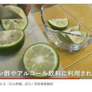 10月7日は『直七の日』  10月6日から 『直七チューハイ』全国発売!!