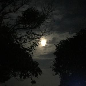 スーパーブラッドムーンの皆既月食