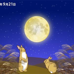 今日は中秋の名月