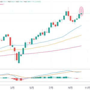 NASDAQ指数の週足で陽のトンカチが出現