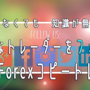 【ほったらかしFX?】HotForexのHFコピートレード