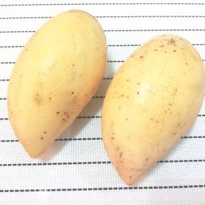 大好きなマンゴー♪〜マレーシア・クアラルンプール
