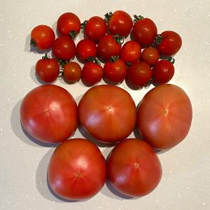 トマトレシピ4選♡最近知ってビックリしたこと