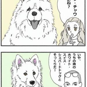 ウォルフィー絵日記「サモエドの飼い主あるある」
