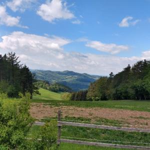 ハイキング Niederösterreich州編 Hegerberg