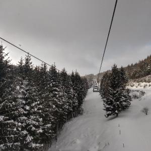 コロナ禍だけどスキーに行った話