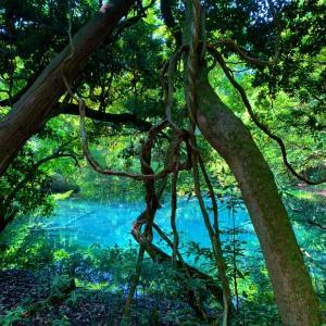 バイクで日本一周,山形県おすすめツーリングスポット丸池様