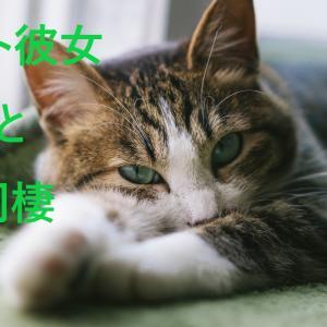 ニート彼女と同棲~専業彼女の生活編~