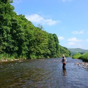 夏空の下の鱒釣り