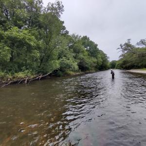 虹鱒釣り。十勝から日高へ。