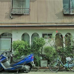 【東京都】江東区亀戸「亀戸三業地・亀戸カフェー街」201912